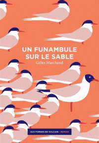 Un funambule sur le sable / Gilles Marchand | Marchand, Gilles (1976-....). Auteur