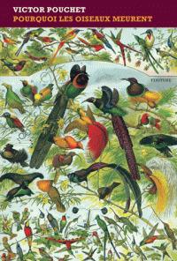 Pourquoi les oiseaux meurent / Victor Pouchet | Pouchet, Victor. Auteur